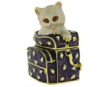Kitten on a case Box DZ-1801
