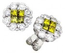 14K White Gold Diamond Cluster Earring 0.65 ct. A14-E0221-WY